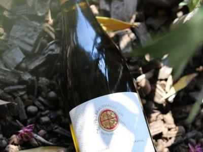 Među pet najboljih chardonnaya u Hrvatskoj dva su iz Kutjeva