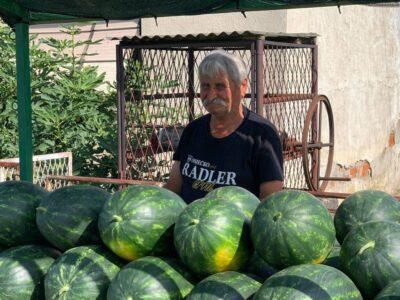 Gospodin Vučić već 15 ljeta Kutjevčanima donosi svježe lubenice iz Kule